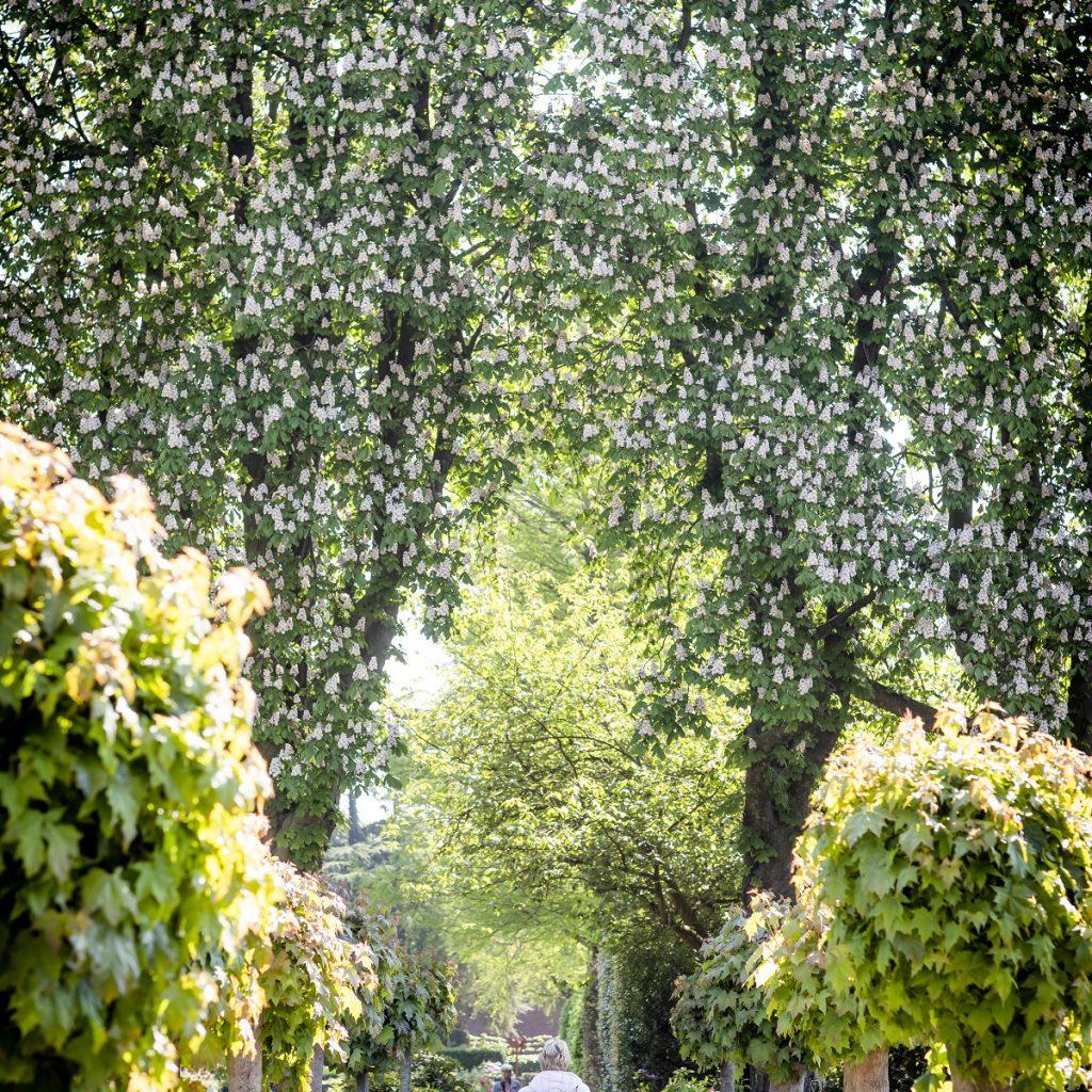 Begraafpark Zuylen