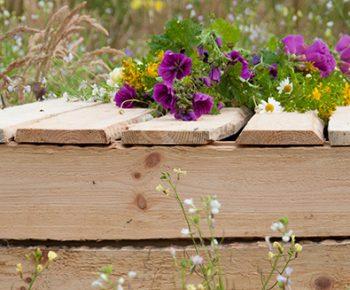 bloemen op kist