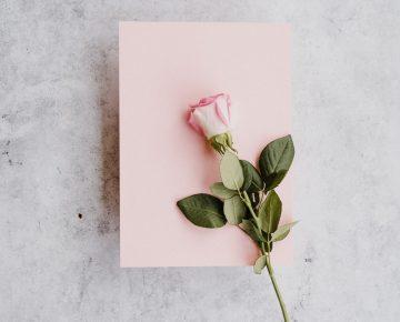 Kaart & roos